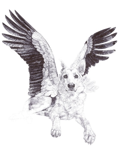 "'""Sweet"". Wolves. In Homage to the Last Great Carnivores of Eurasia', 2013. original black Biro drawing"