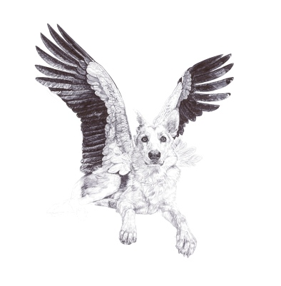 """'Sweet', Wolves, In Homage to the Last Great Carnivores of Eurasia"", 2013, Archival Pigment Print from original black Biro drawing"