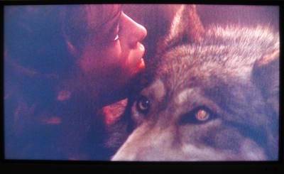 Artist's own film still 'The Company of Wolves', 2007