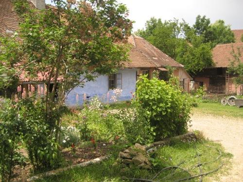 The Miller's garden, Transylvania, 2008