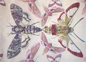 'The British Moth Throw', 2012, detail, hand-cut transfers on calico