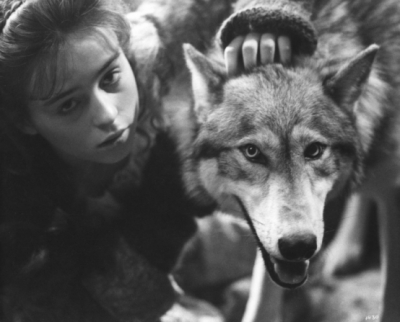 'The Company of Wolves', Neil Jordan, 1984