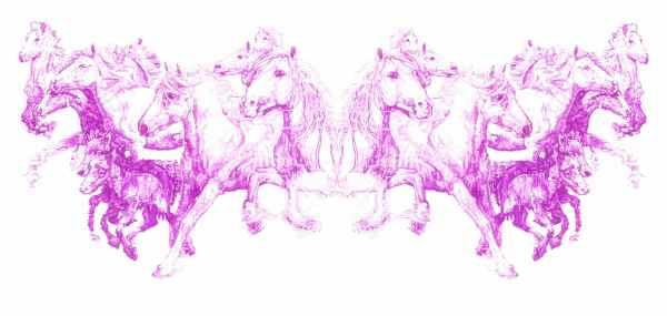 """""""Seawind"""", purple Biro drawing, 2012 by Jane Lee McCracken"""