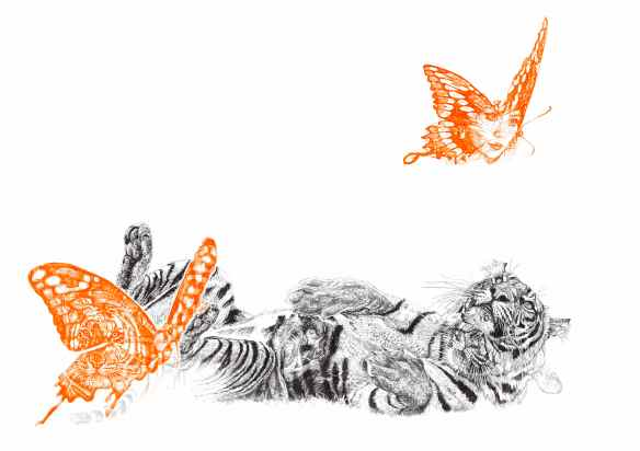 'Butterfly Lover', black and neon orange Biro drawing made especially for SAVE WILD TIGERS by Jane Lee McCracken
