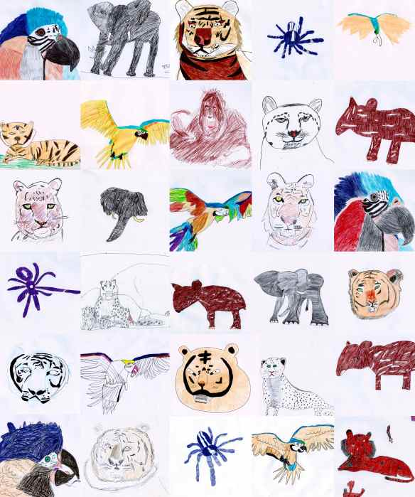 Amazing colour Biro drawings by Year 6 students
