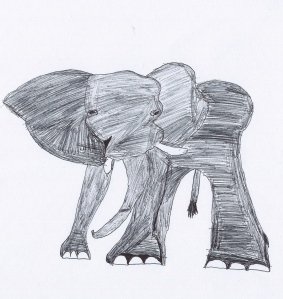 """African Elephant"", colour Biro drawing, Year 6 Student"