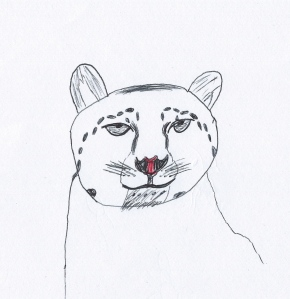 """Snow Leopard"" colour biro drawing, Year 6 student"