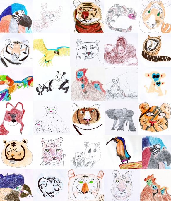 Endangered Species drawings by students of years 5 & 6