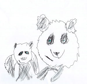 Giant Panda by Year 5 Student
