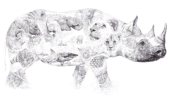 'Rhino 2014', In Homage to 'Africa', 2014 black Biro drawing Jane Lee McCracken made exclusively for Mark Thorpe and Chengeta Wildlife