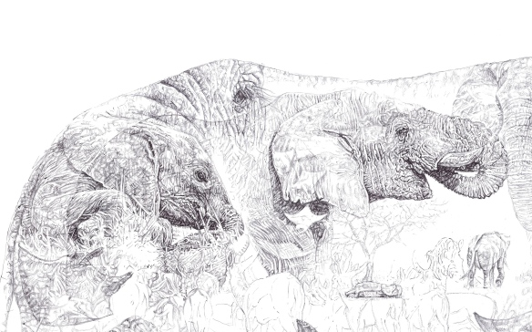 'Rhino 2014', detail of elephants