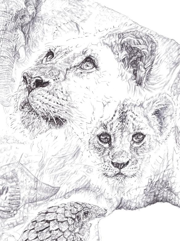 'Rhino 2014', lions detail