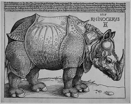 'Rhinoceros', Albrecht Durer, 15