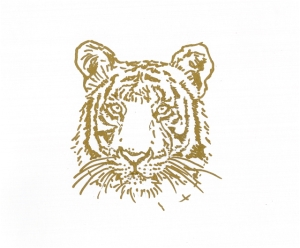 Original Gold Tiger Drawing in each book.