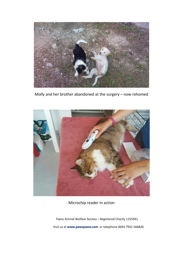 Page 7 Credit: Paxos Animal Welfare Society – Registered Charity 1155941