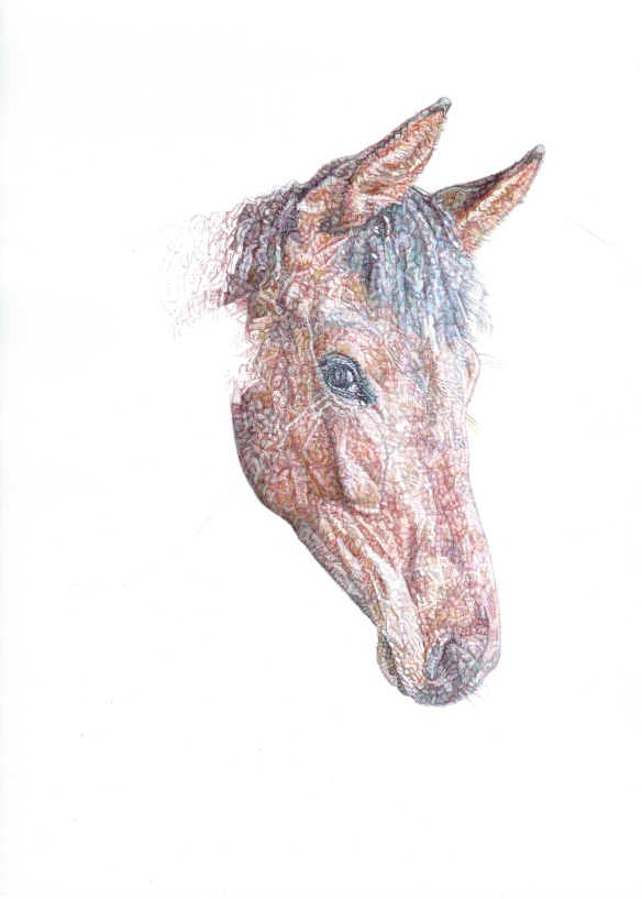 'Pilgrim', 2015 colour Biro drawing
