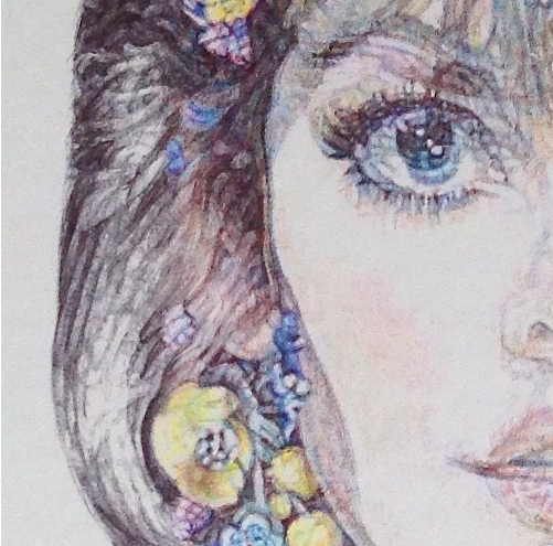 Detail of colour Biro drawing by Jane Lee McCracken