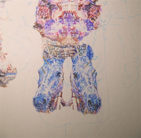 Detail of Roxy, colour Biro drawing